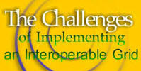 The Challenges of Implementing an Interoperable Grid